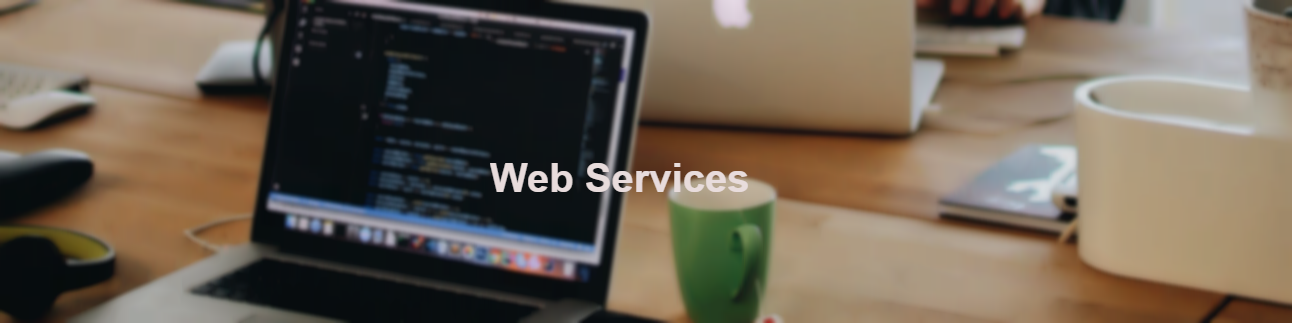 Web Services Arystons